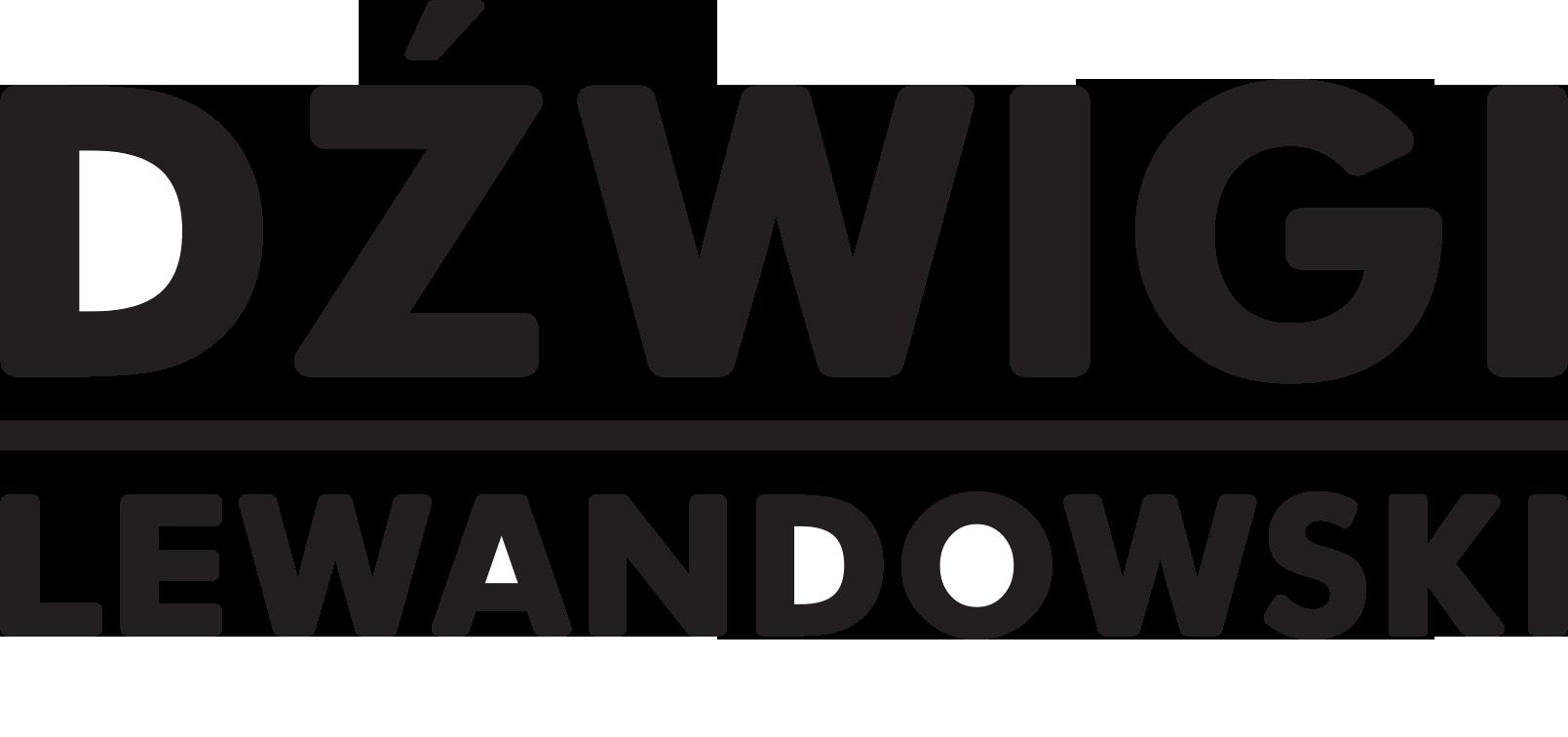 dzwigi-warszawa.pl